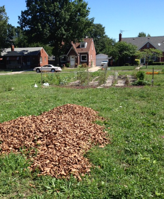 Bring Your Compost Materials to the Hereford Community Garden